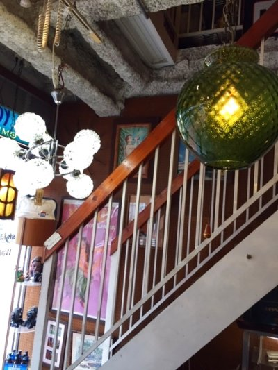 画像3: Modern Grass Pendant Light