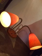 画像1:  Goose Neck FaiberGrass Light   (1)