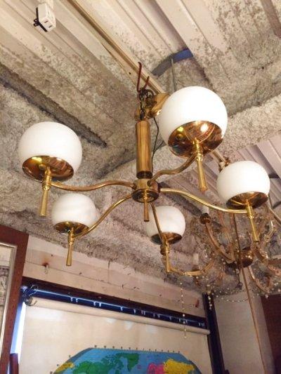 画像2: Modern 5灯 Pendant Light