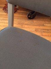 """画像12: """"United Chair"""" Metal Chair (12)"""