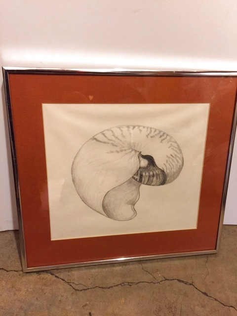 "画像1: ""Ammonite"" Wall Hang (1)"